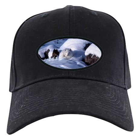 Arctic Fox Black Cap