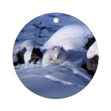 Arctic Fox Ornament (Round)