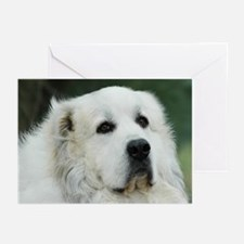 Cute Great pyrenees Greeting Cards (Pk of 20)