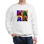 Afghan Hound Color Blocks Sweatshirt