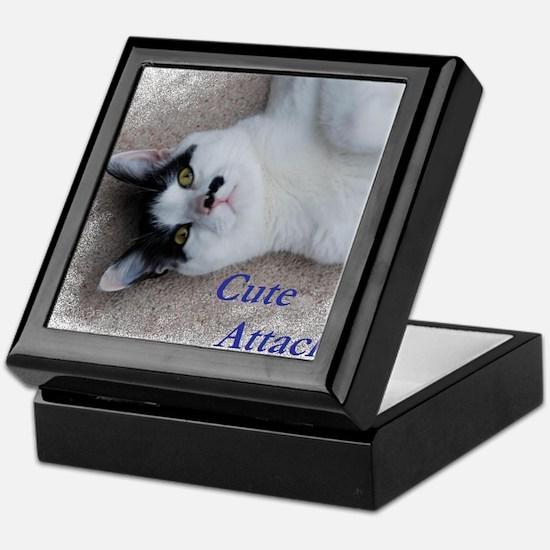 Cute Attack Cat Keepsake Box