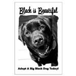 Adopt a Big Black Dog Large Poster