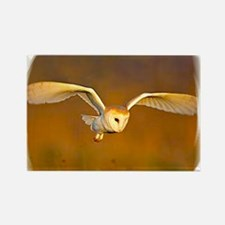 Eagle personalized Rectangle Magnet