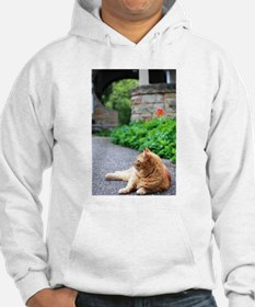Relax Like a Cat Hoodie