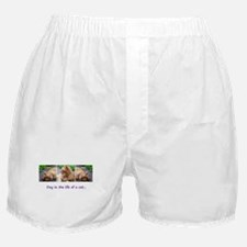 Day in the Life Boxer Shorts