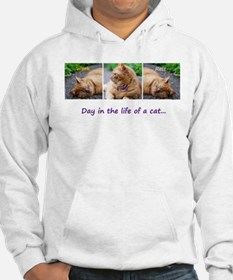 Day in the Life Hoodie