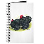 Black Frizzle Cochins2 Journal