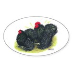 Black Frizzle Cochins2 Oval Sticker (10 pk)
