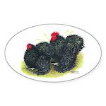 Black Frizzle Cochins2 Oval Sticker (50 pk)