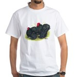 Black Frizzle Cochins2 White T-Shirt