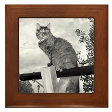 Cat on Swingset Framed Tile