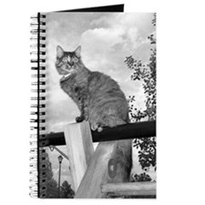 Cat on Swingset Journal