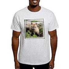 Red Fox Kit T-Shirt