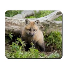 Red Fox Kit Mousepad