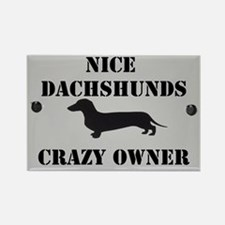 Nice Dachshunds Rectangle Magnet