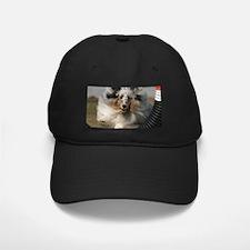 Sheltie Agility Baseball Hat