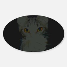 Kat Scratch Oval Decal