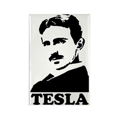 Tesla Rectangle Magnet