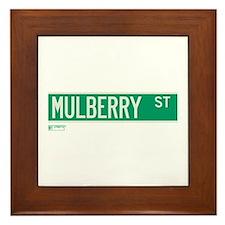 Mulberry Street in NY Framed Tile