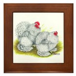 White Frizzle Cochins Framed Tile
