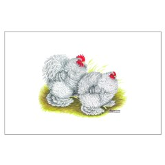 White Frizzle Cochins Posters