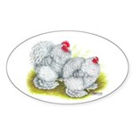 White Frizzle Cochins Oval Sticker (10 pk)