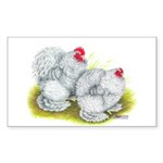 White Frizzle Cochins Rectangle Sticker 50 pk)