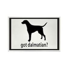 Got Dalmatian? Rectangle Magnet