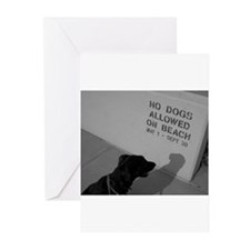 Black Lab  No Dogs Allowed Greeting Cards (Package