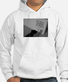 Black Lab No Dogs Allowed Hoodie