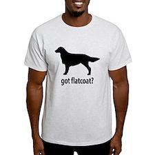Got Flatcoat? T-Shirt
