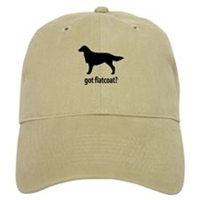 Got Flatcoat? Baseball Cap