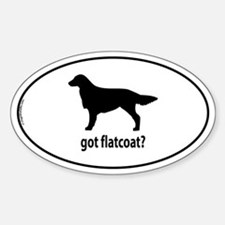 Got Flatcoat? Oval Decal