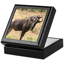 Wildebeests Keepsake Box