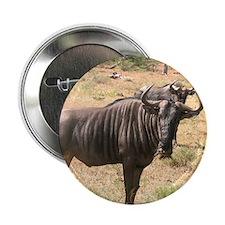 """Wildebeests 2.25"""" Button"""