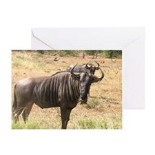 Wildebeests Greeting Card