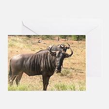 Wildebeests Greeting Card