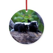 Skunk Keepsake (Round)