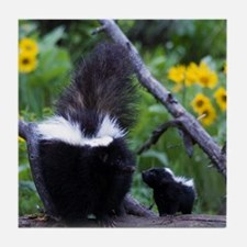 Skunk Tile Coaster