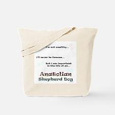 ASD Life Tote Bag