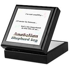 ASD Life Keepsake Box