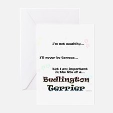 Bedlington Life Greeting Cards (Pk of 20)