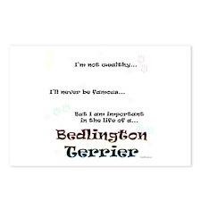 Bedlington Life Postcards (Package of 8)