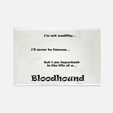 Bloodhound Life Rectangle Magnet