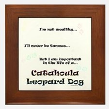 Catahoula Life Framed Tile