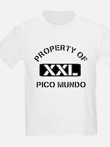 Property of Pico Mundo T-Shirt