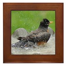 Funny Birdbath Framed Tile