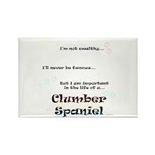 Clumber Life Rectangle Magnet