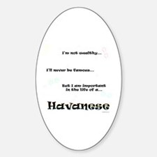 Havanese Life Oval Decal