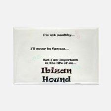 Ibizan Life Rectangle Magnet (100 pack)